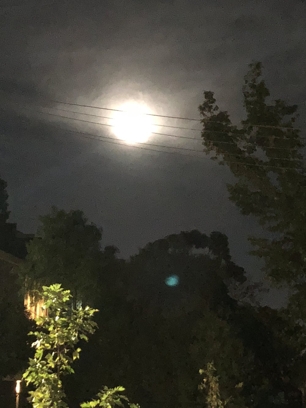 ...the Taurus Full Moon, as seen in Melbourne whilst we were meditating.....