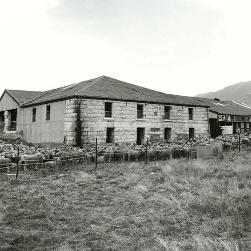 HakatarameaWaddington1979NZArchives.jpg