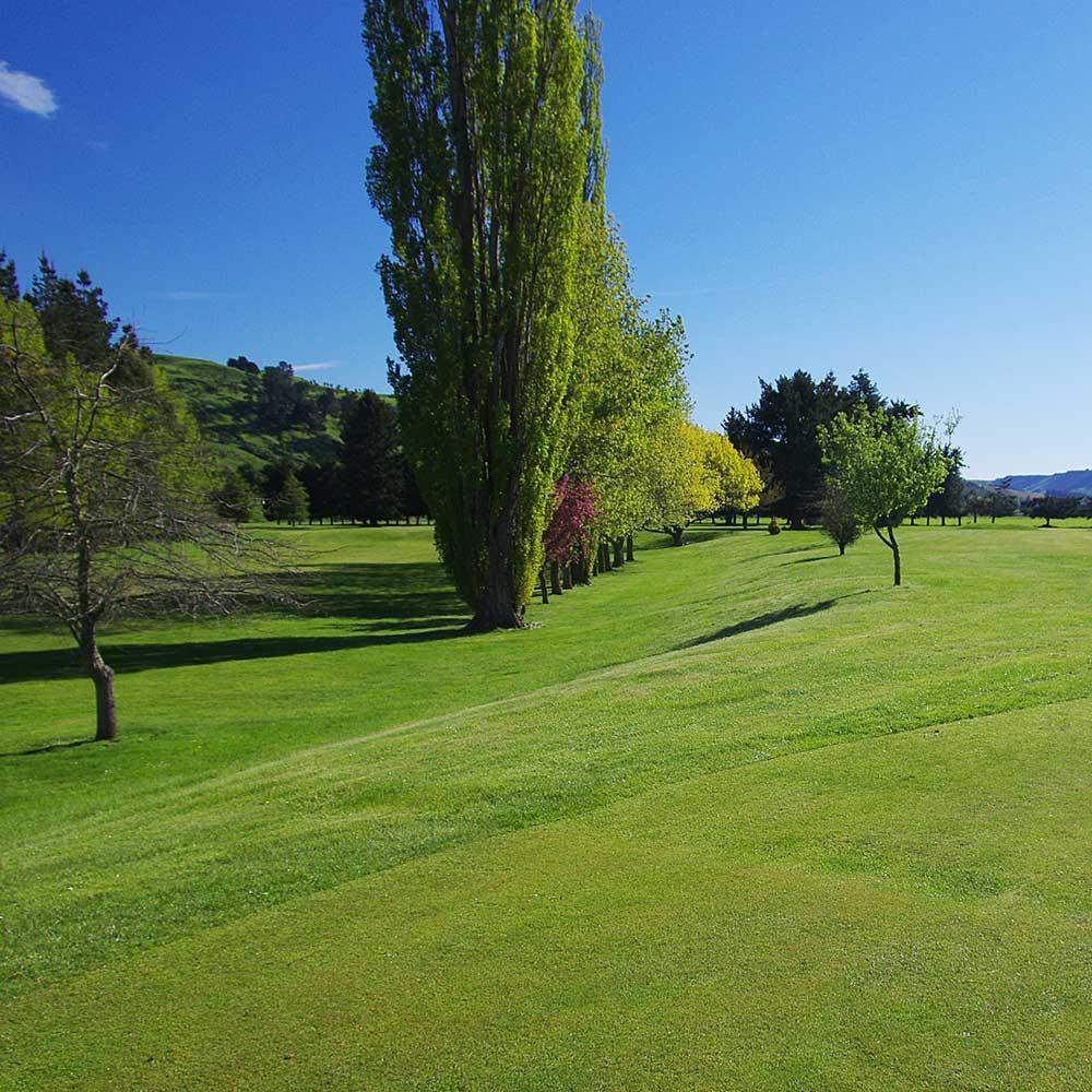 golf-m.jpg