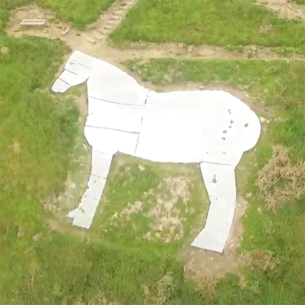 The White Horse Waimate New Zealand