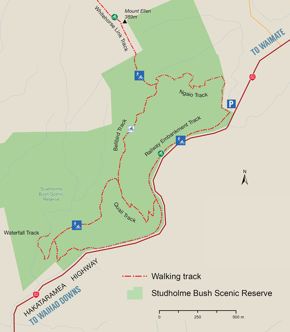 Studholme Bush Walking Tracks, Waimate