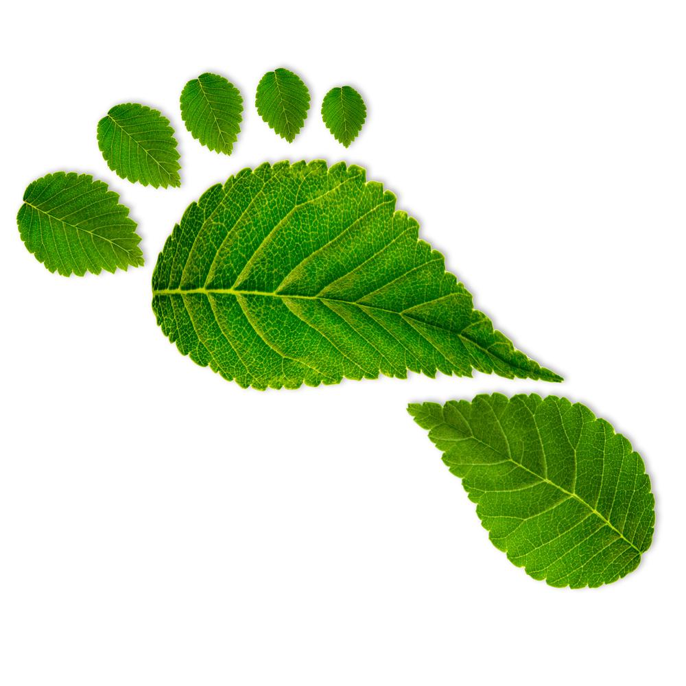 eco-footprint.jpg