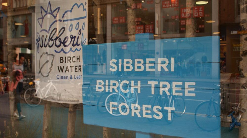 Sibberi Whole Foods Windows