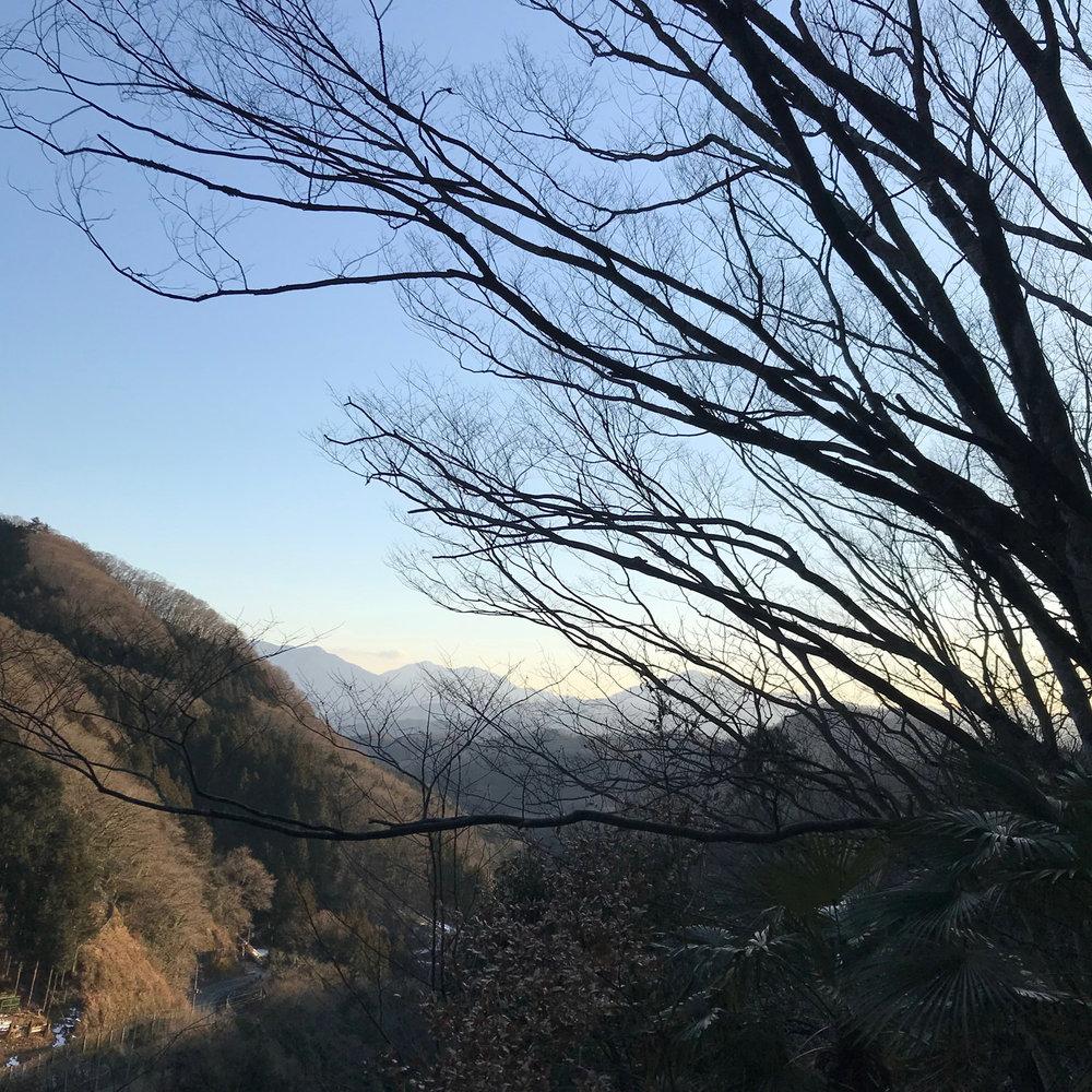 Fujino - arty view