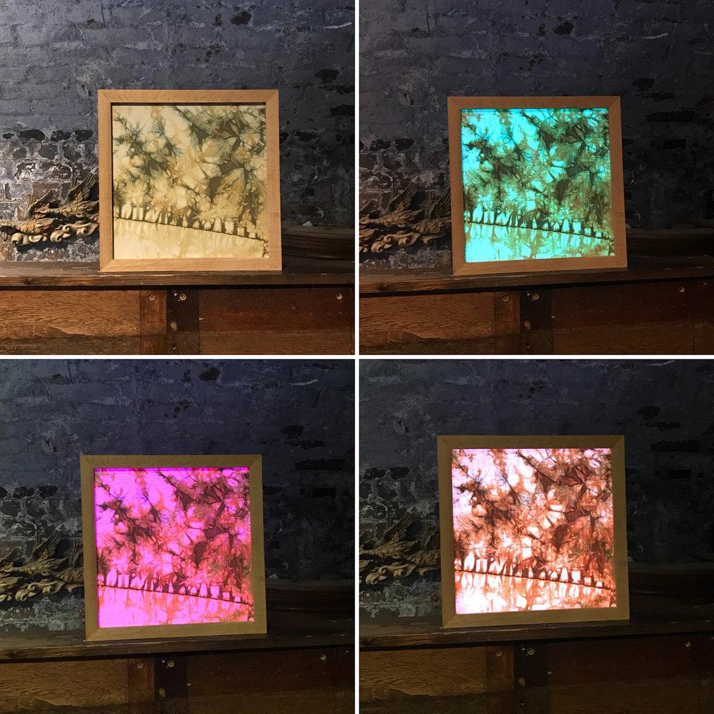 Romor Designs light changing panel.jpg