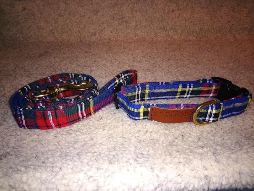 Scoffdug Collar and Lead