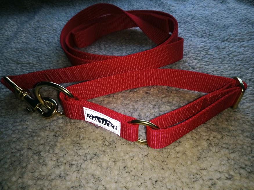 Rundug - Collar and 1.8m Lead