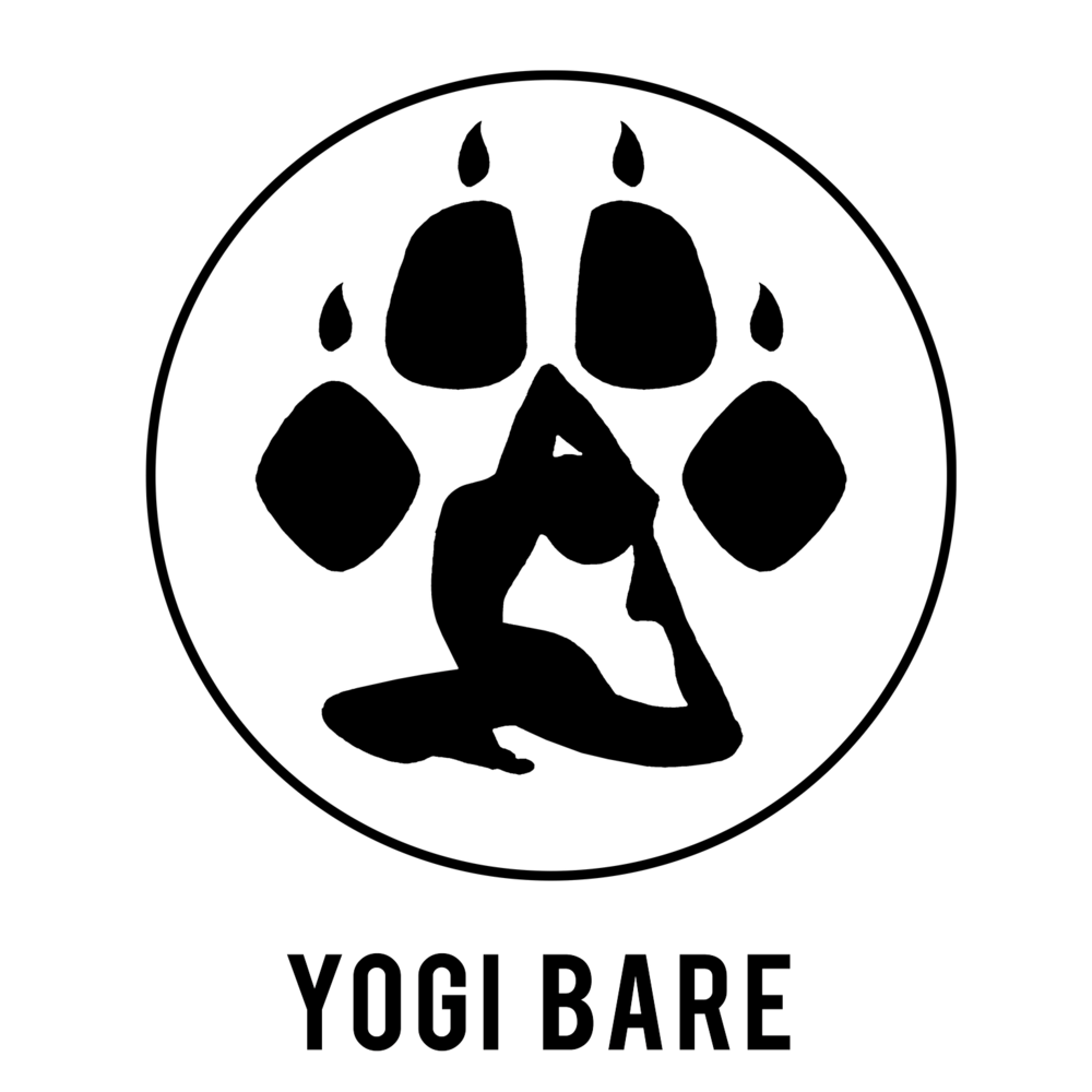 Yogi-Bare-Logo_preview.png