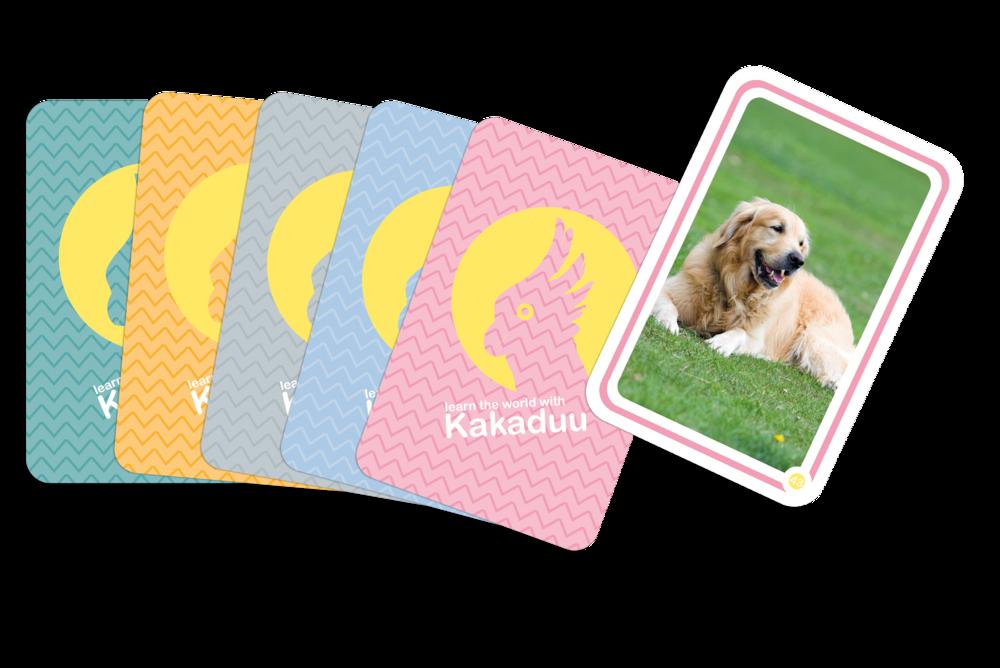 Kartenset_tiere_overlay.png