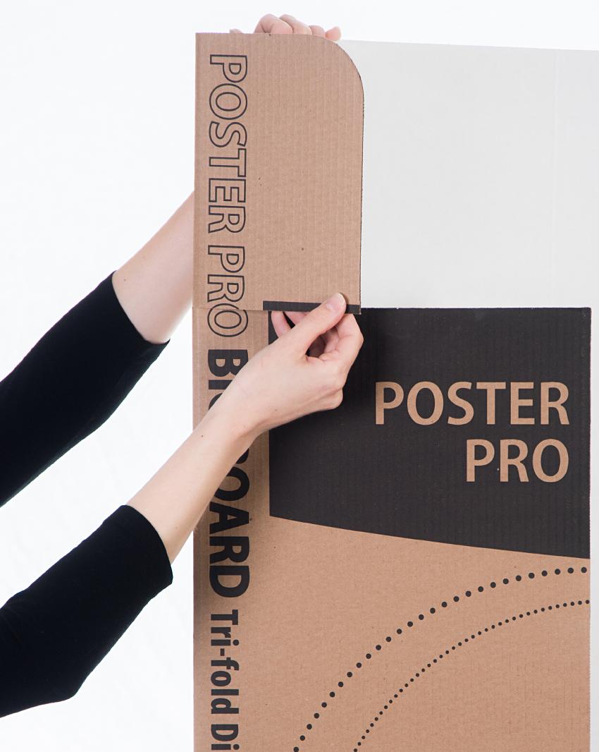 Poster Pro_folding2.jpg