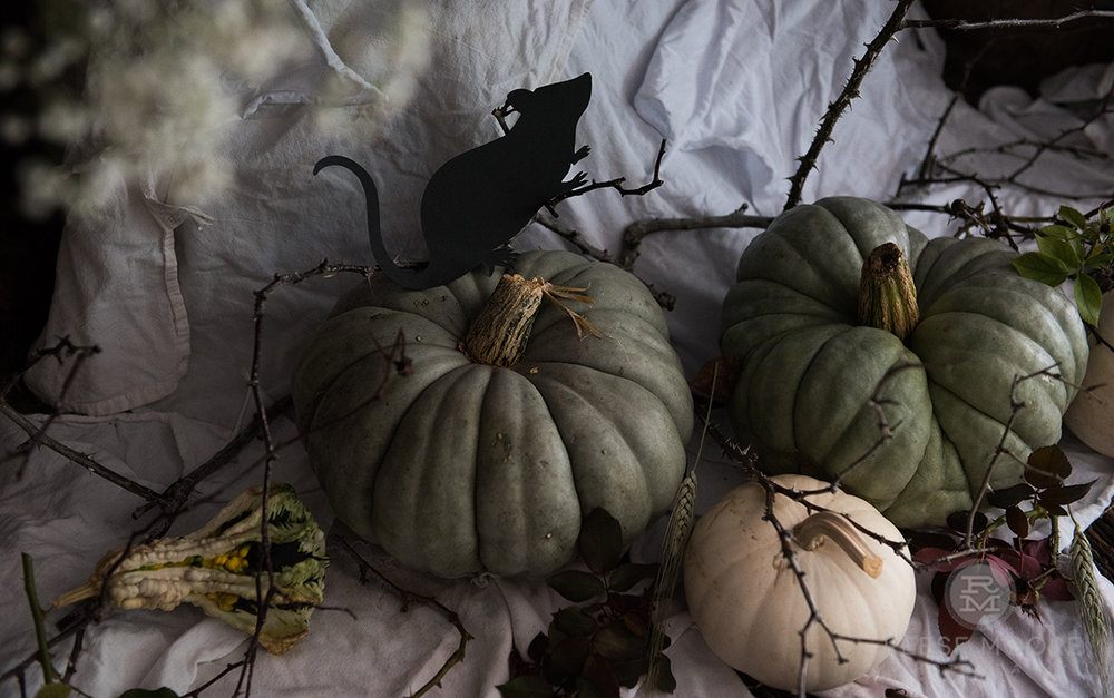 Buying pumpkins isn't typicallyeco-friendly, unfortunately. - But I am going to compost them all, and you should too!