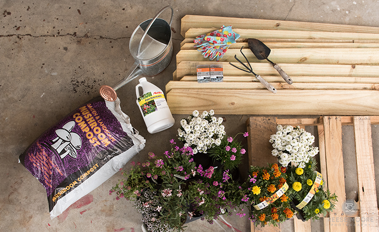 How to Build a Bee Garden from a Wood Pallet
