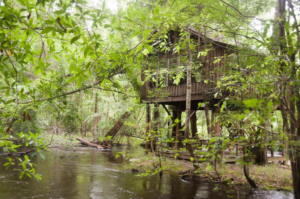 treehouseontheedisto-5996.jpg