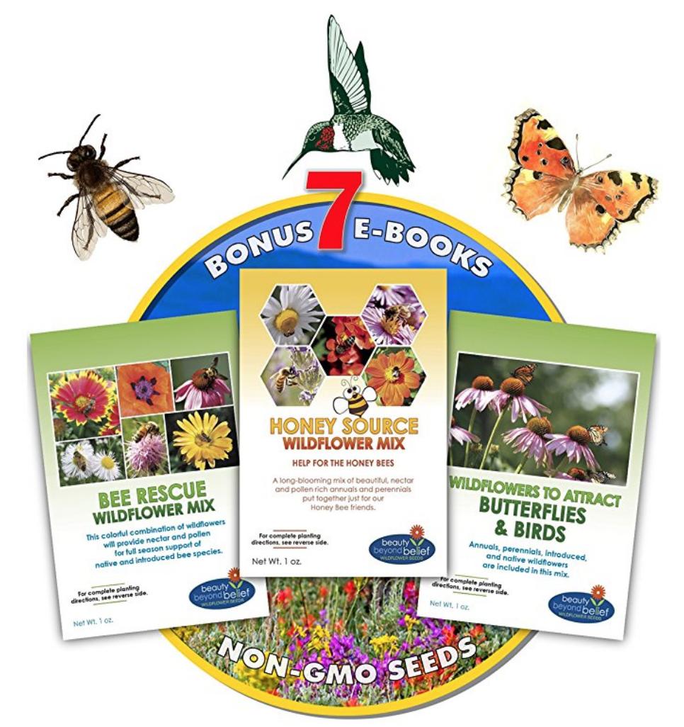 Non-GMO Seeds