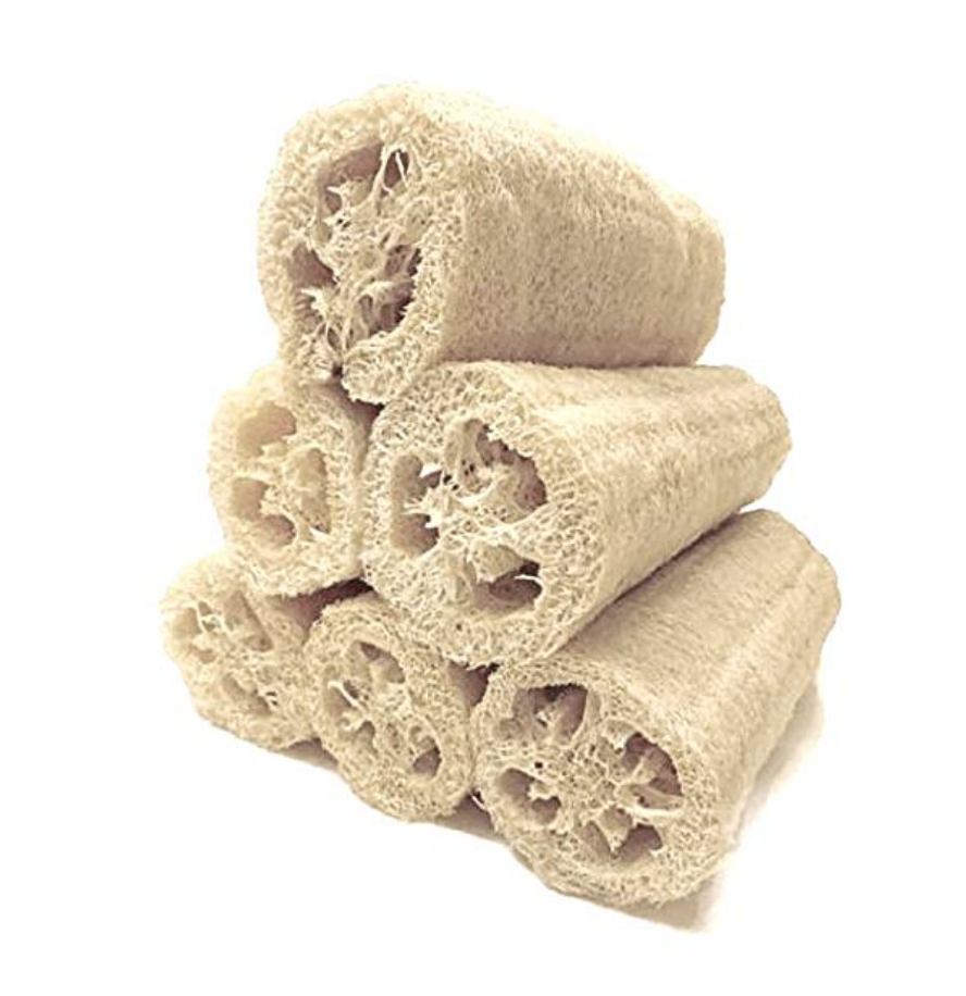Pack of 6 Loofah Gourds