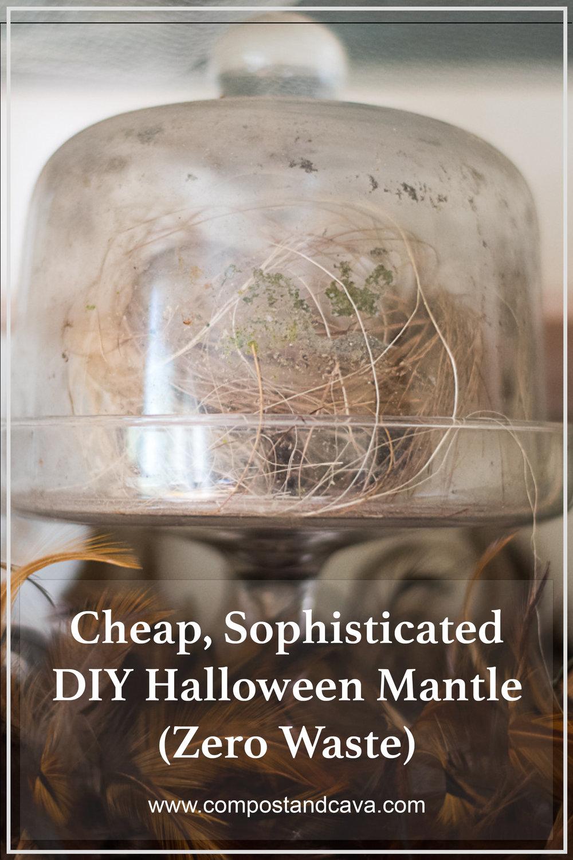 Cheap, Sophisticated DIY Halloween Decor (Zero Waste)