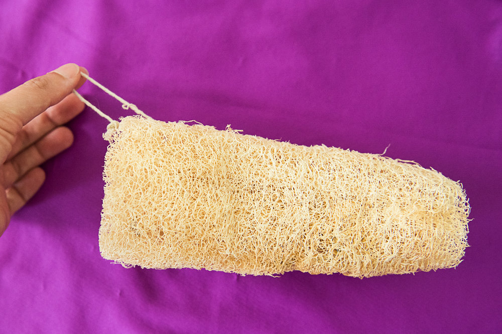 8 Awesome Things To Know About The Loofah Gourd for Eco-Friendly Living-1004.jpg
