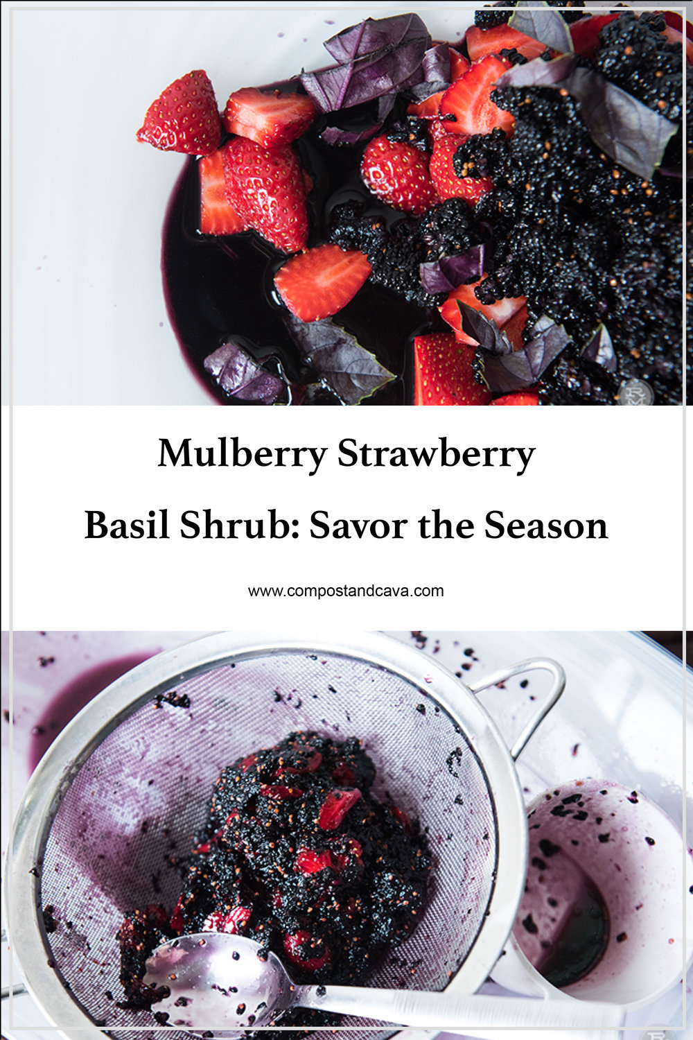 Mulberry Strawberry Basil Shrub- Savor the Season