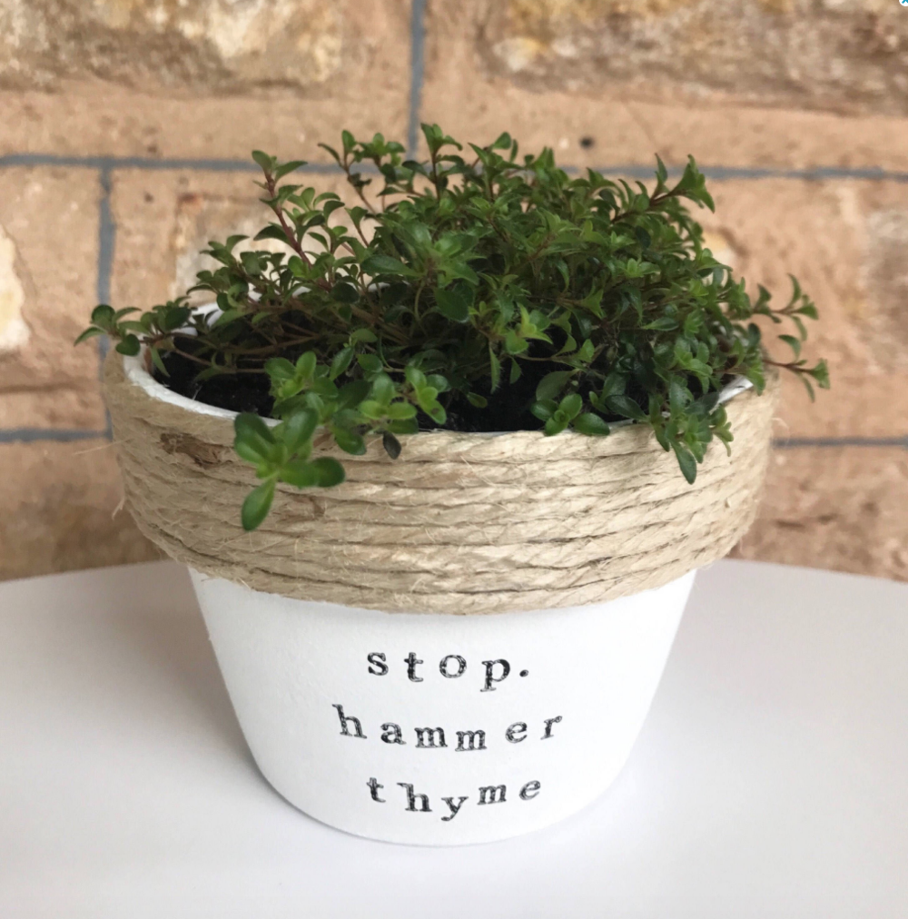 Stop. Hammer Thyme Pot