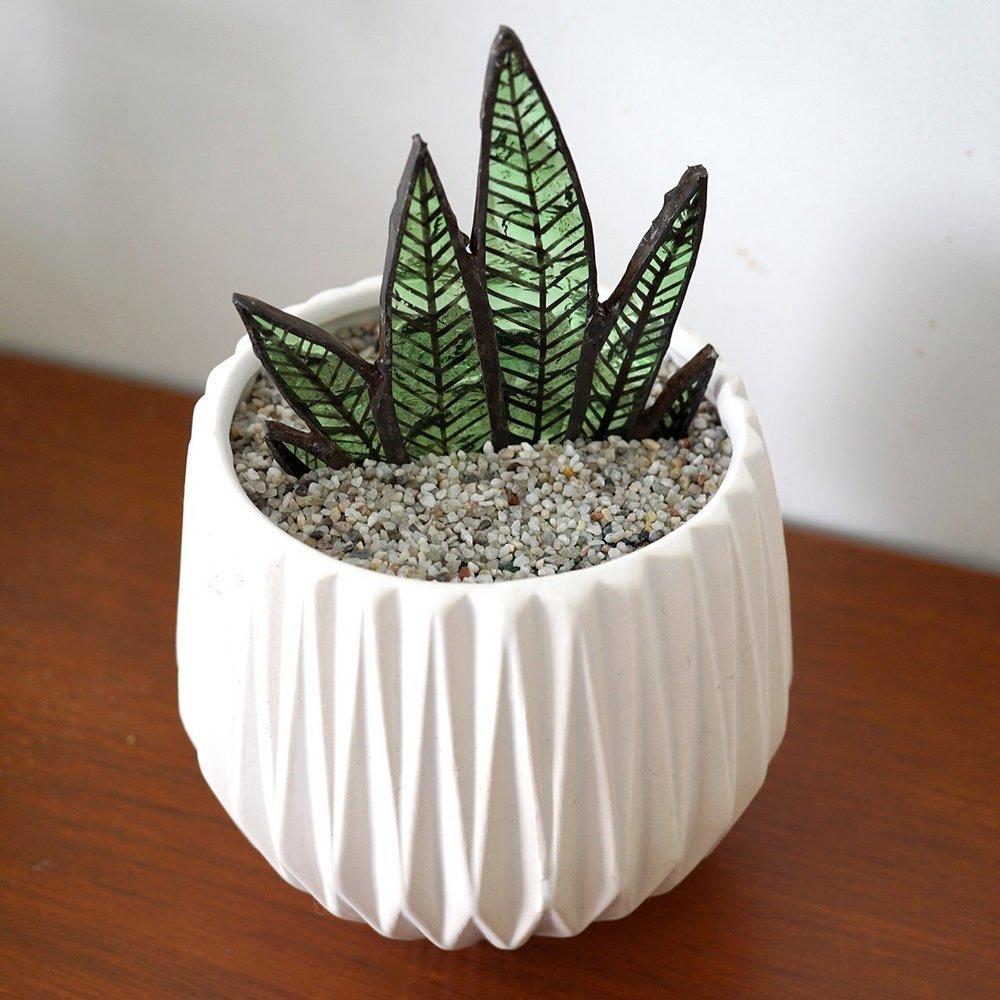 Repurposed Glass Succulent