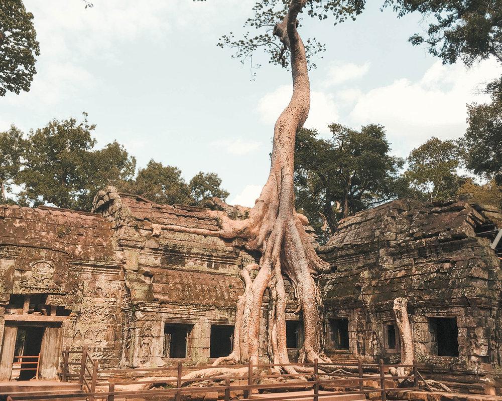 cambodia_22.jpg