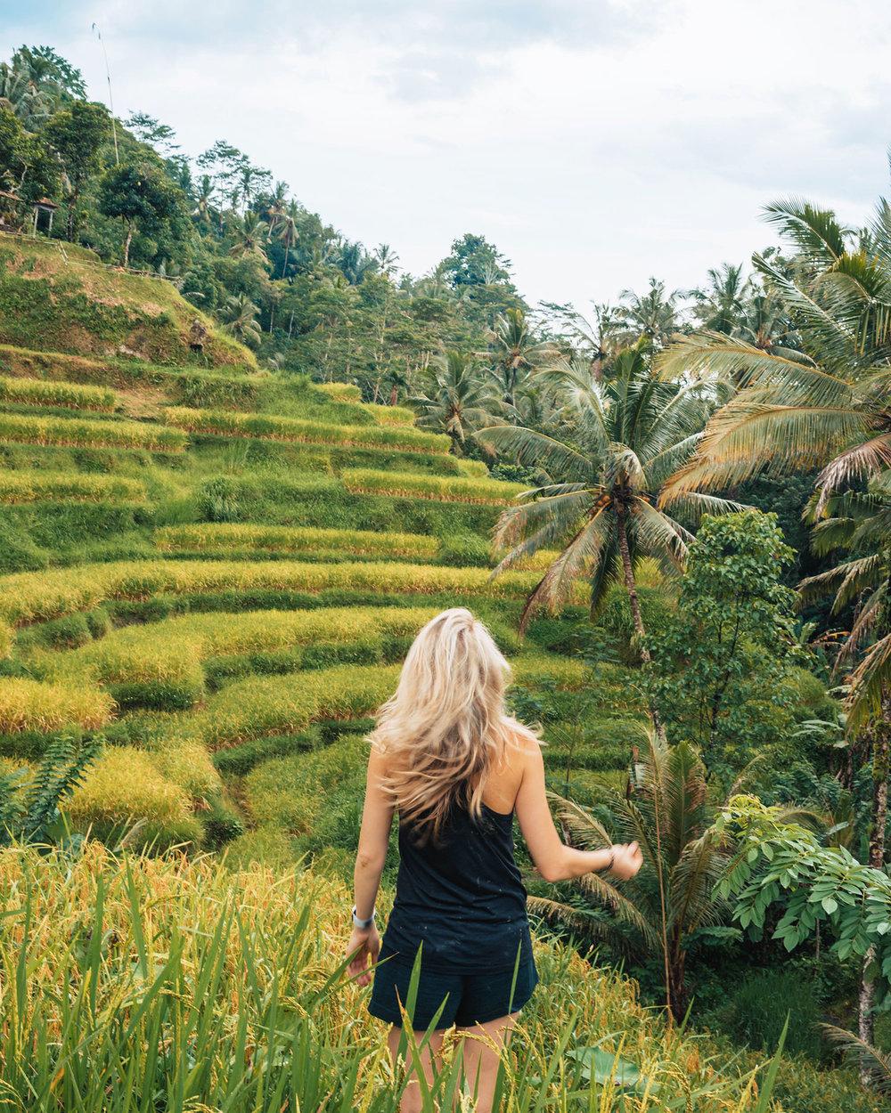 indonesia34.jpg
