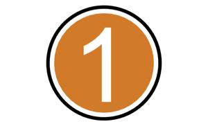 1 icon orange.jpg