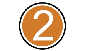 2 icon orange.jpg