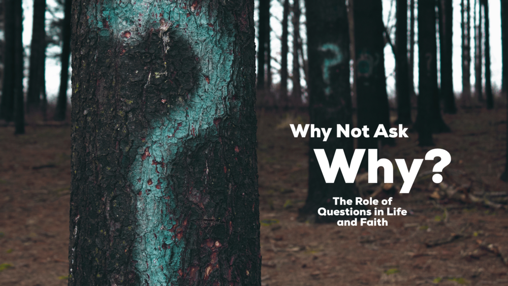 Reid discusses the importance of asking and seeking answers to questions in the life of faith.