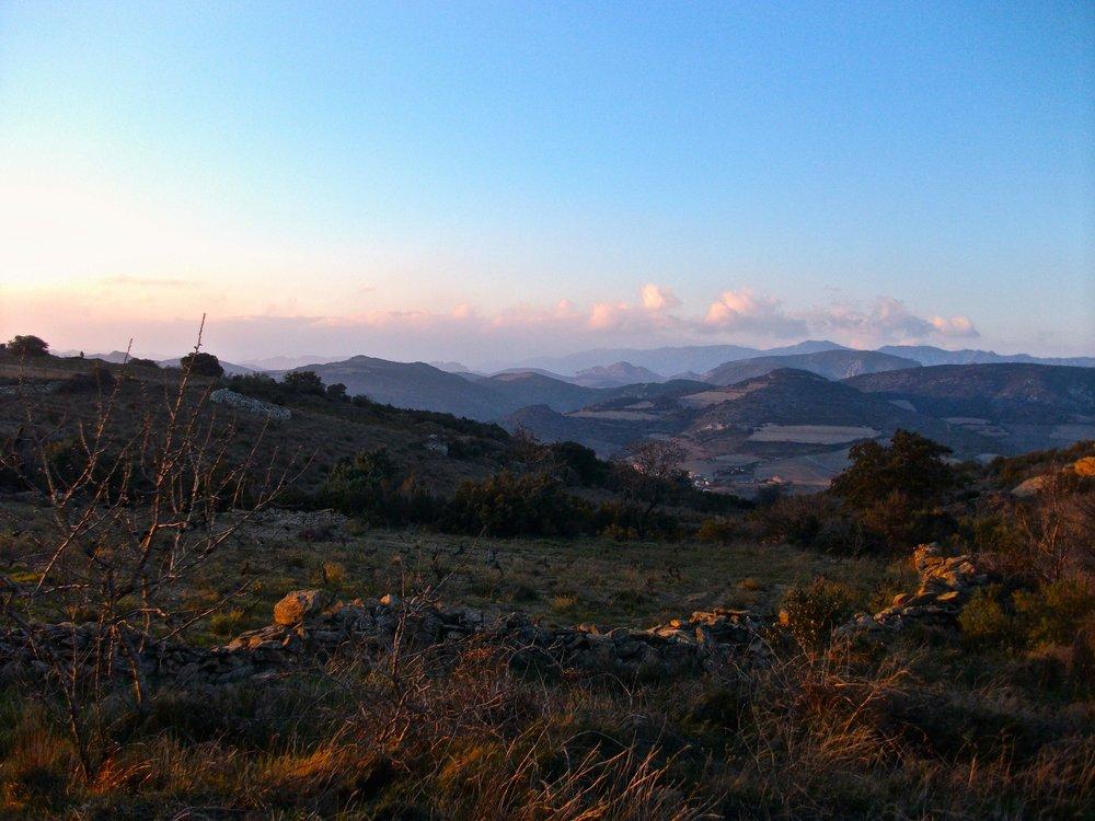 l'ausseil vineyards with a view.jpg