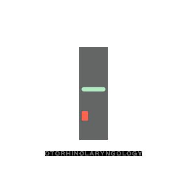 18-Otorhinolaryngology.png