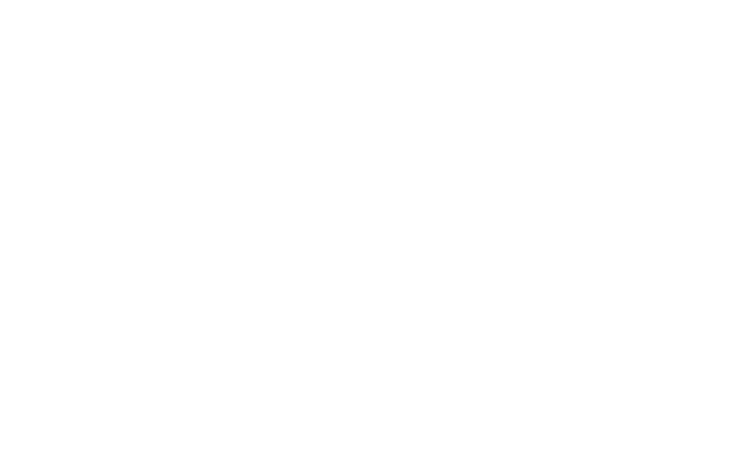 Lifetime Developments