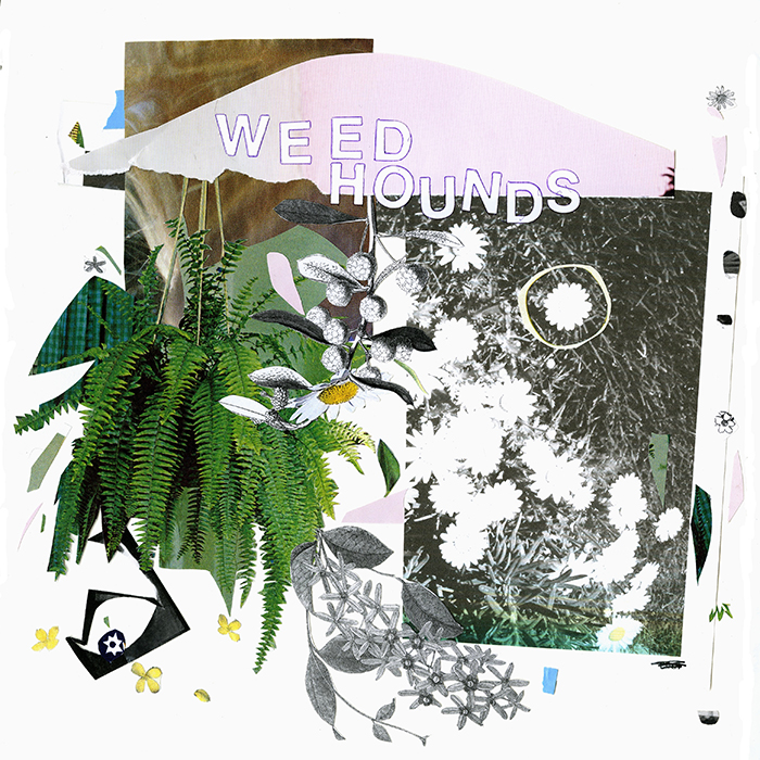 Weed Hounds LP, released on Katorga Works, 2014