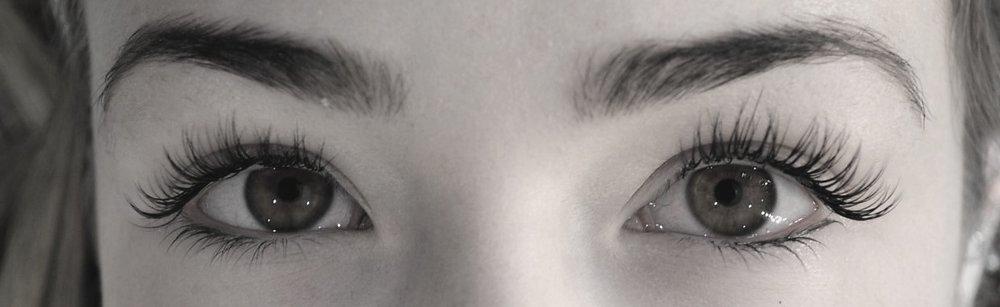 lash + brow -