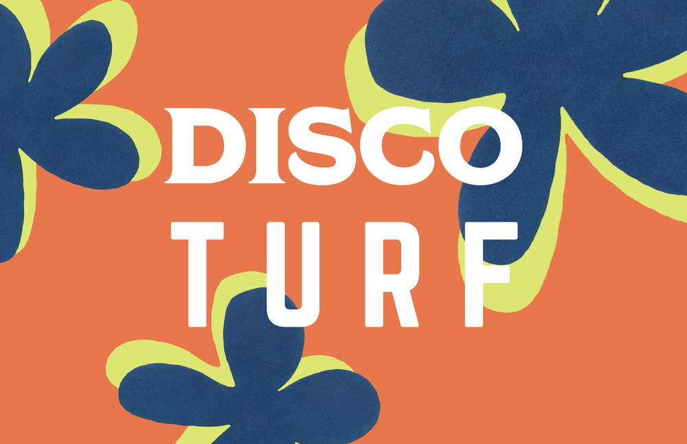 Disco Turf_Page_01.png