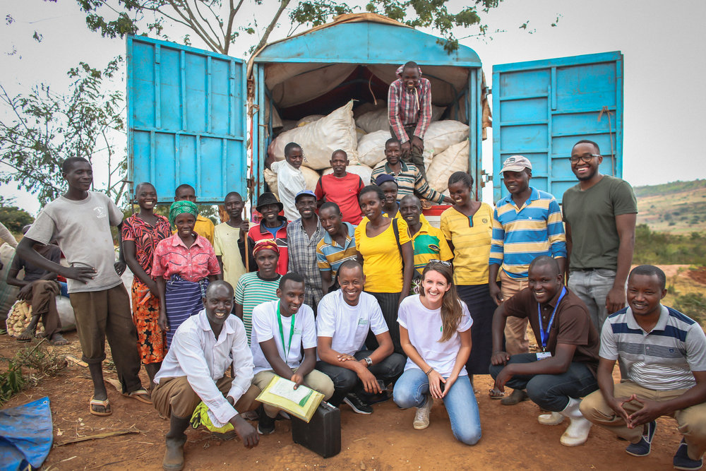 The Kumwe Harvest team collecting maize from a local co-operative.