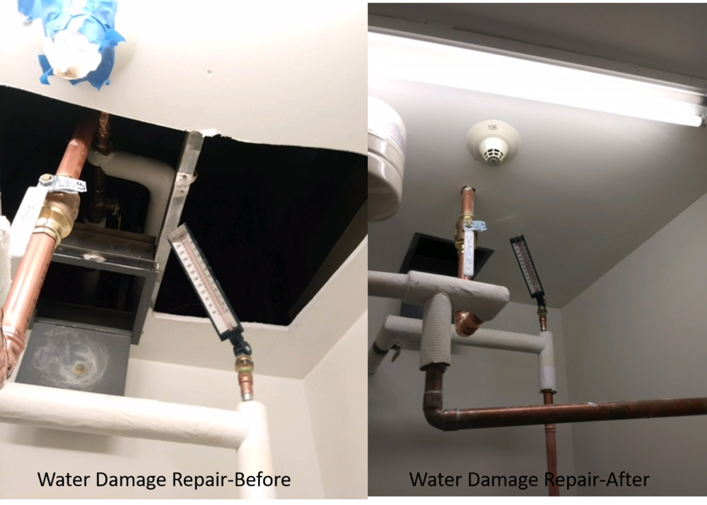 Water Damage Before and After.png