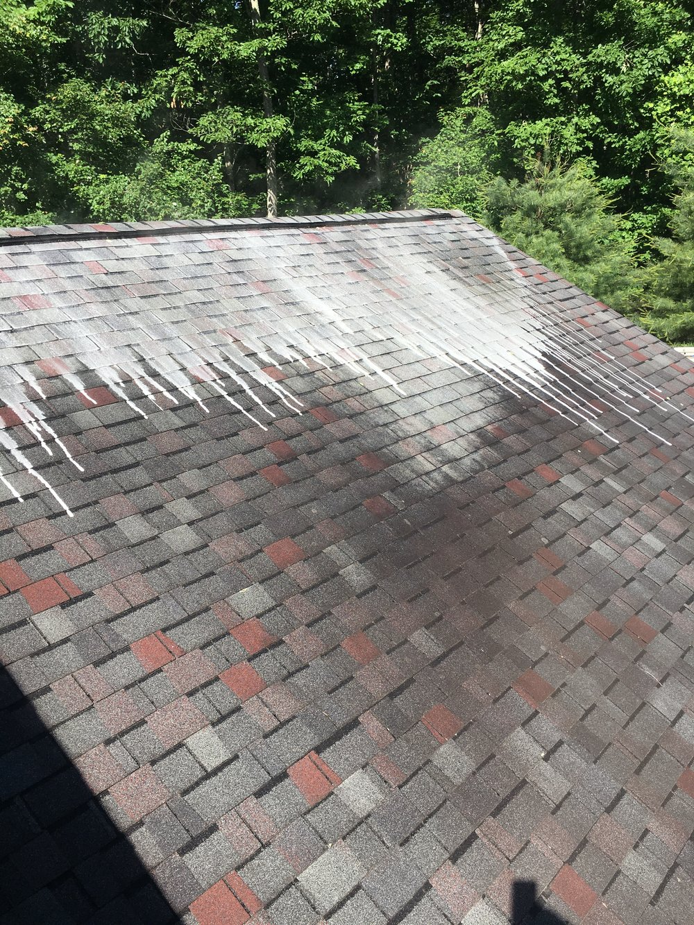 - Residential Roof Cleanings