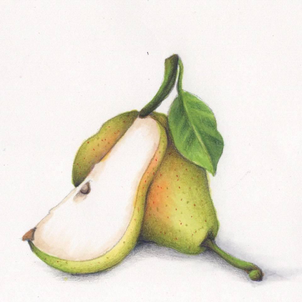 Frankie Pears.jpg