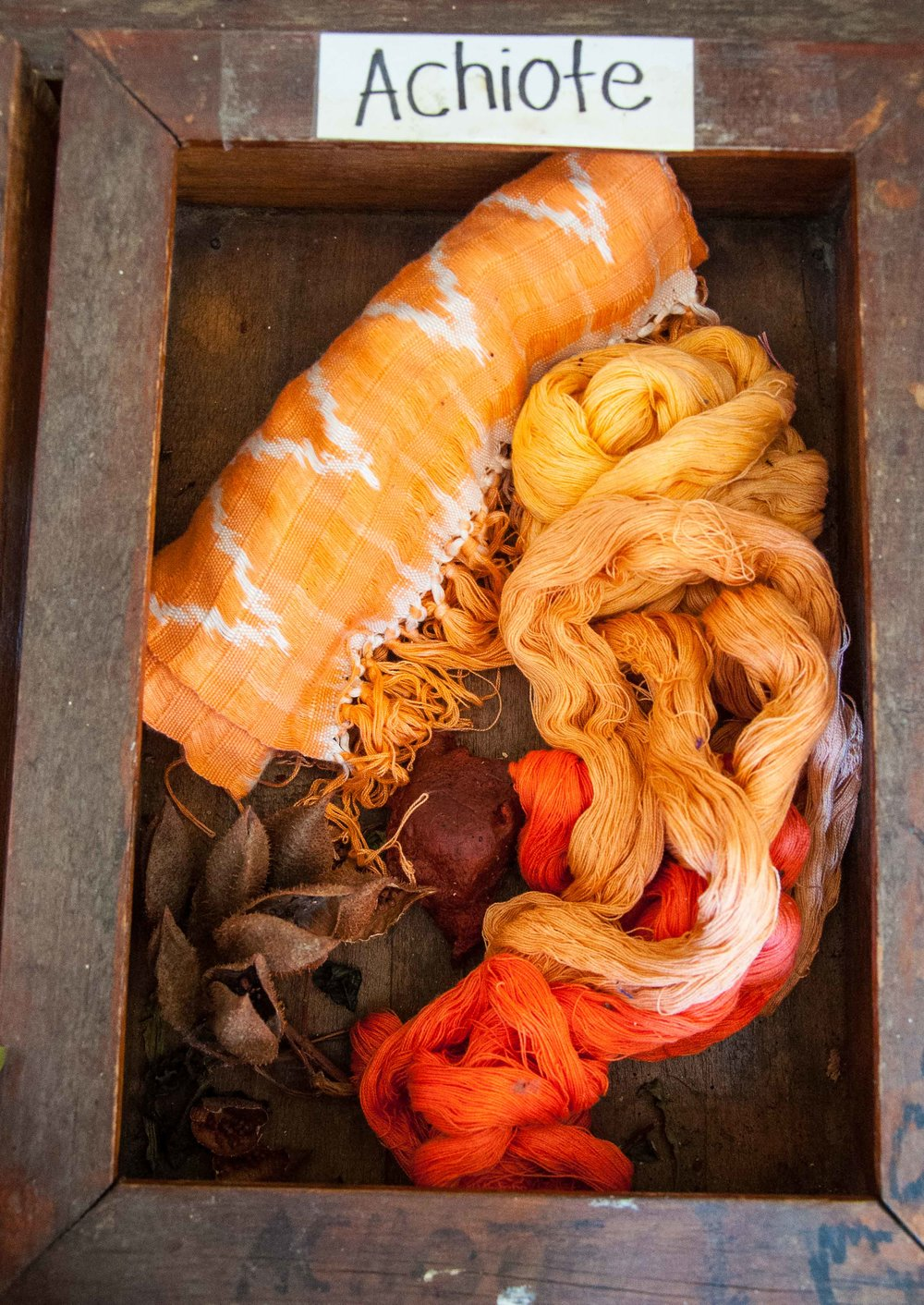 dye-tray-achiote-0864.jpg