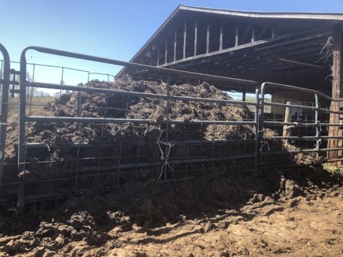 fertilizer at Old Holler Farm cattle farm in Rural Hall, NC