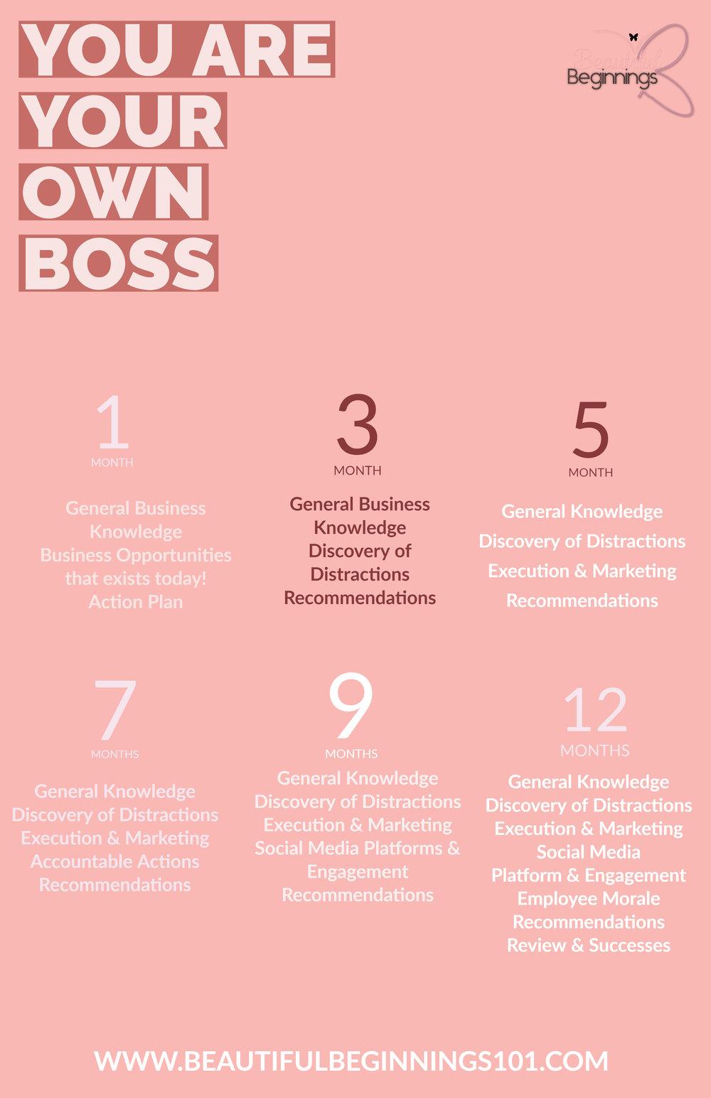 small business, entrepreneurship, coachrenee101, social media, marketing, advertising, project management