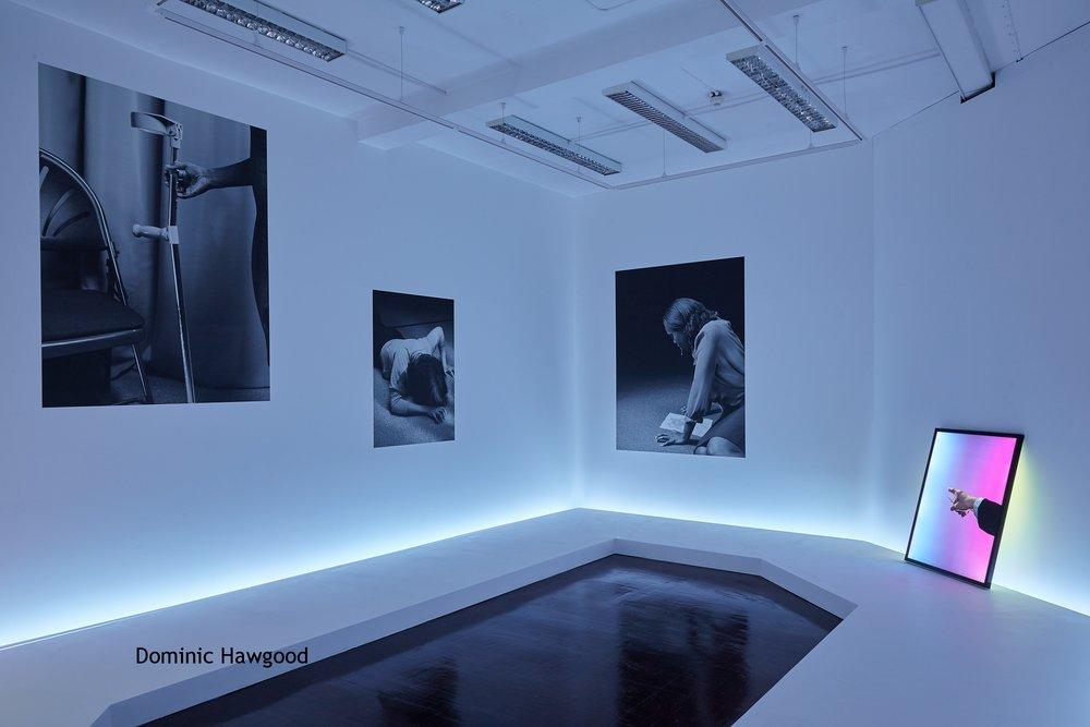 Dominic Hawgood