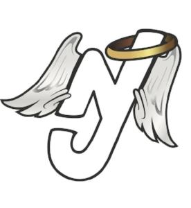 NewJersey-Angels-Stylesheet.jpg