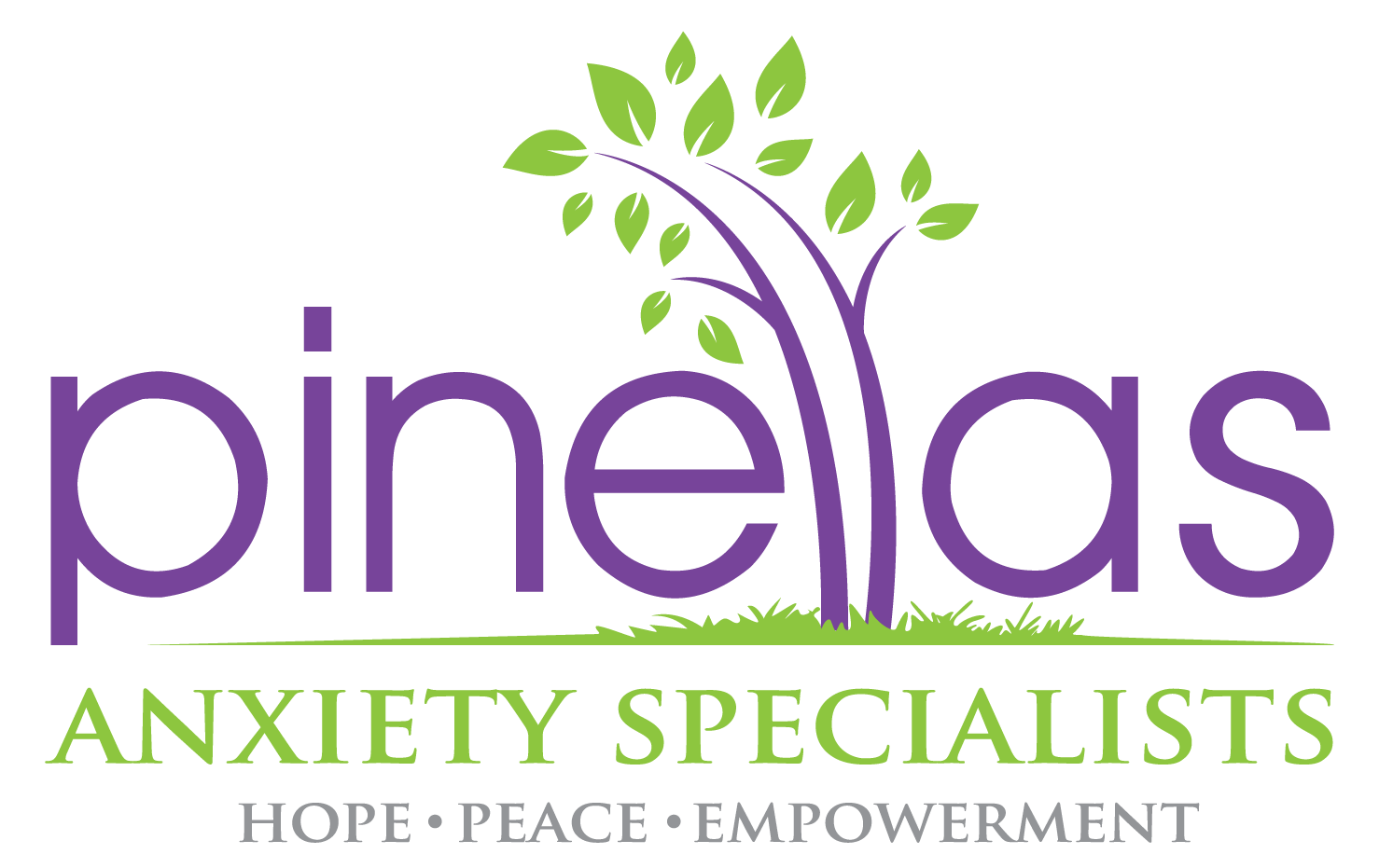 Pinellas Anxiety Specialists | Therapy for Stress and Worry | Dr. Kevin Hyde | Palm Harbor