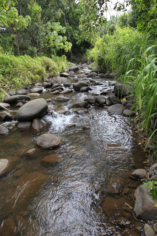 Waikapū   Stream    Read More