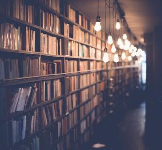 EN full bokhylla livar upp i hemmet.