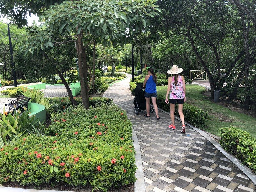 Path in Parque Espiritu del Manglar.JPG