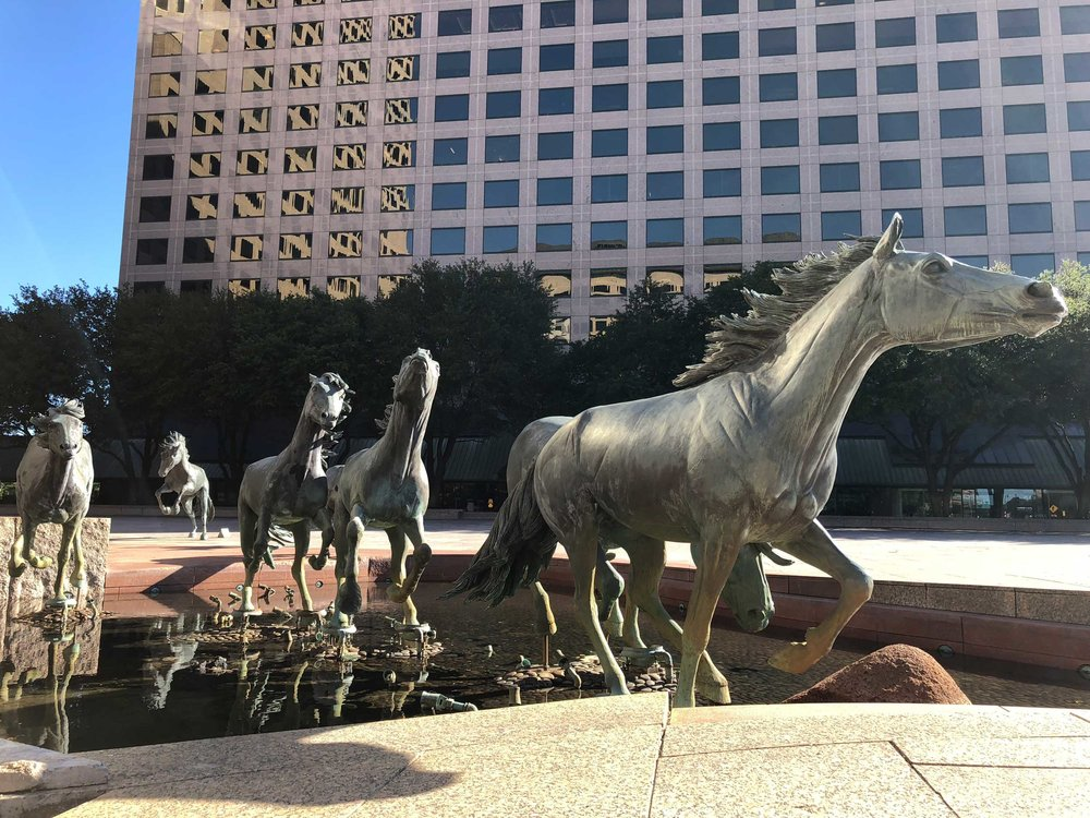Beautiful stallion statues in Irving, Texas.