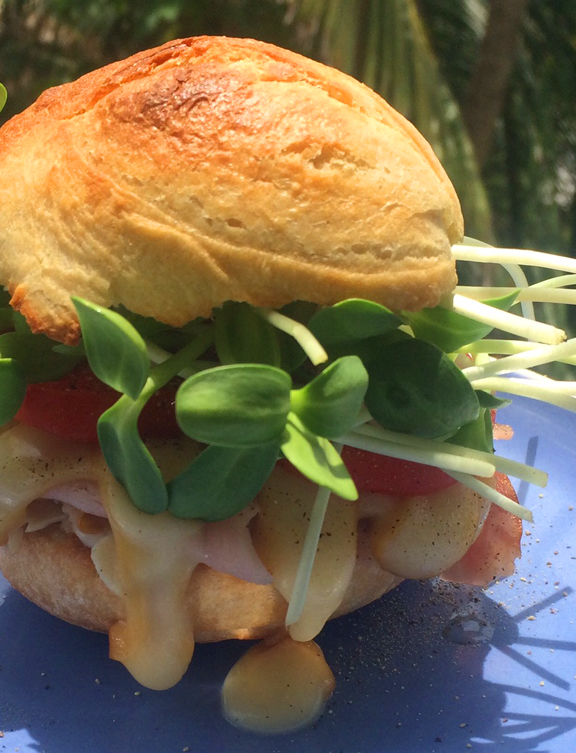 - Smoked Turkey Melted Cheese Sandwich Roll with Sunflower Microgreens